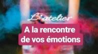 a la rencontre de vos émotions workshop sylvie thaon centre téora coach art thérapie coaching par l'art atelier webatelier gérer ses émotions sérénité