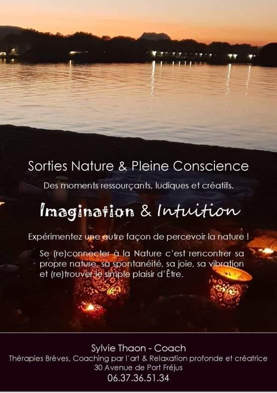 Sortie nature pleine conscience sylvie thaon sophrologie bain de nature land art mandala intuition frejus var saint raphael draguignan