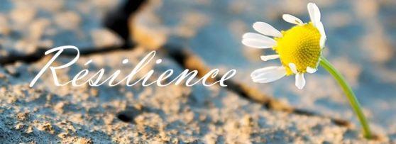 résilience croissance post traumatique therapies breves emdr hypnose gtsconcept eft matrix trauma deuil agression viol licenciement maladie séparation accident  consultation var alpes maritimes bouches du rhone france frejus saint raphael draguignan cannes nice marseille skype téléphone sylvie thaon