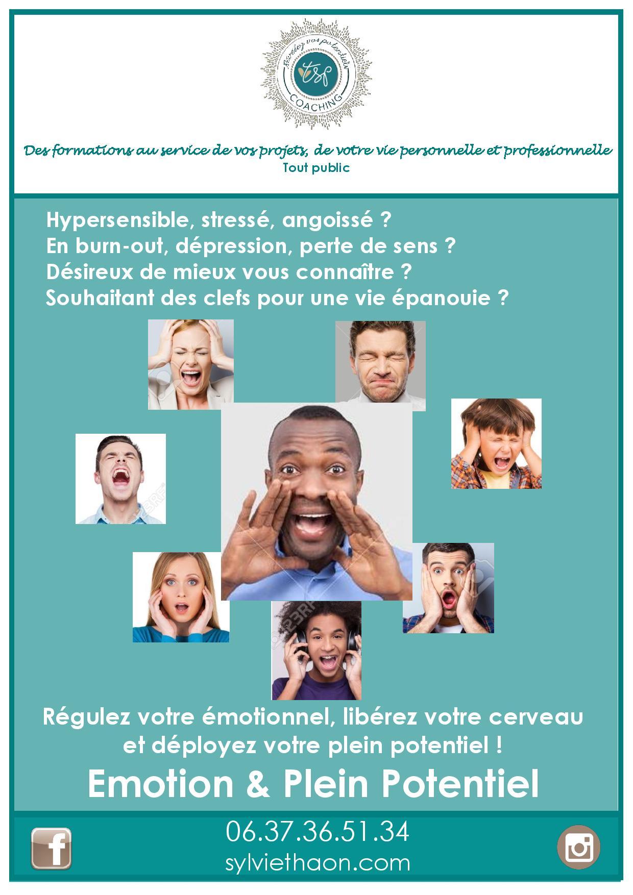 formation emotion plein potentiel liberer son cerveau sylvie thaon coach developpement personnel