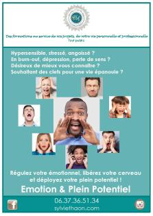 formation emotion plein potentiel liberer son cerveau sylvie thaon coach developpement personnel