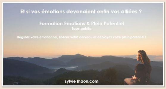 emotion plein potentiel liberez votre cerveau neurosciences sylvie thhaon stress colere serenite hypersensiblité formation frejus saint raphael cannes var alpes maitimes paca